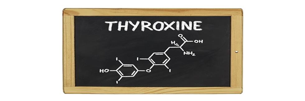 chimica tiroide